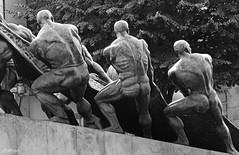 La unin hace la fuerza (Franco DAlbao) Tags: sculpture monument bronze work lumix trabajo fishing fishermen monumento escultura pesca vigo bronce pescadores leicalens blackwhitephotos dalbao francodalbao