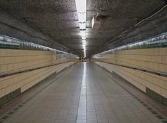 Pathvonia (Wilson Rivera) Tags: jerseycity perspective tunnel