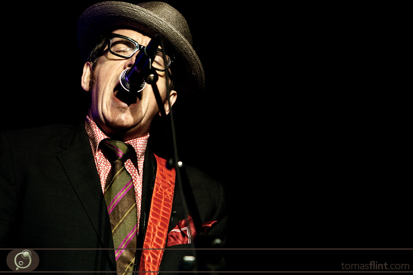 elvis_costello-flint-9