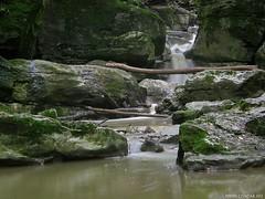 Római-fürdő (Égfigyelő) Tags: geotagged bakony patak vízesés sp550 bakonynána rómaifürdő