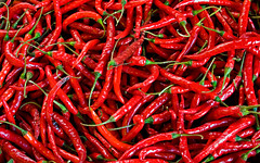 [Free Image] Objects, Food, Vegetable, Chili Pepper, Red, 201108061300
