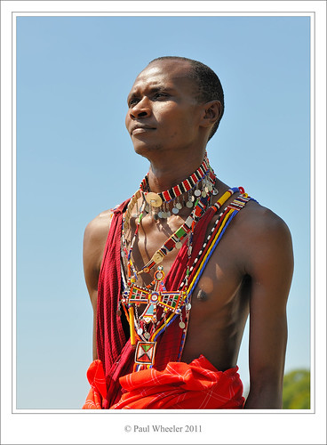 The Noble Maasai