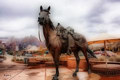 Downtown Sedona (gabi-h) Tags: street arizona horse mountains southwest statue us sedona western redrock umbrellas saddle gabih