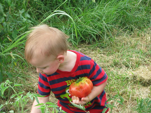 A young boy carries a half-eaten tomato. From Biscoe's perspective, food like tomatoes becomes more than just a commodity when you are able to meet your customer face-to-face.
