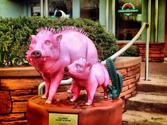 Pinky (gabi-h) Tags: pink arizona cactus usa statue stairs sedona javelinas redrock peccary pinkjeeptours gabih skunkpig