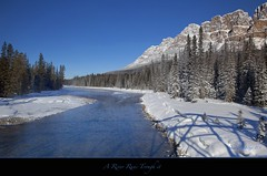 "A River Runs Through It. (Joalhi ""Back in Miami"") Tags: winter alberta bowriver coth5 castlemountainbanff"