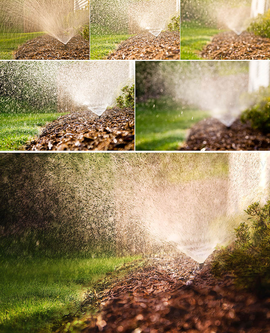 Sprinkler Compare Collage