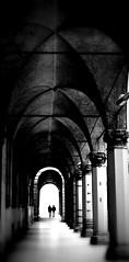 passeggiata (viaggiaresiii) Tags: light bw tunnel bn bologna nebbia infinito portici architettura due luce colonne archi passeggiata contrasto indue versodove tagviaggia