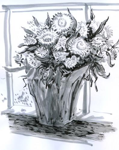 August 2011: Strawflowers