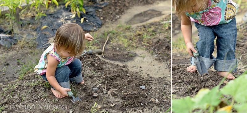 Playground and Gardening5-Edit