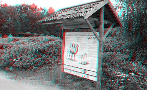 Tallinn Zoo in stereo