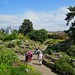 Kew Rock Garden and Alpine House