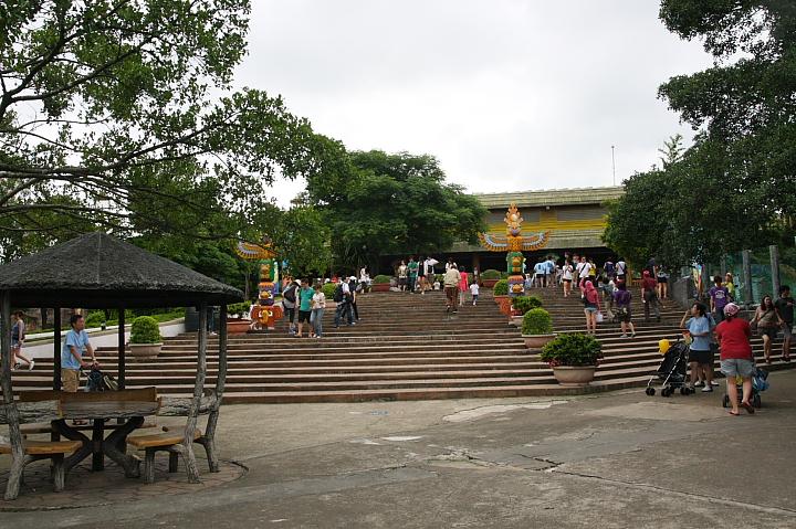 六福村動物園012
