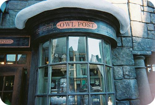 owl post rosettes round
