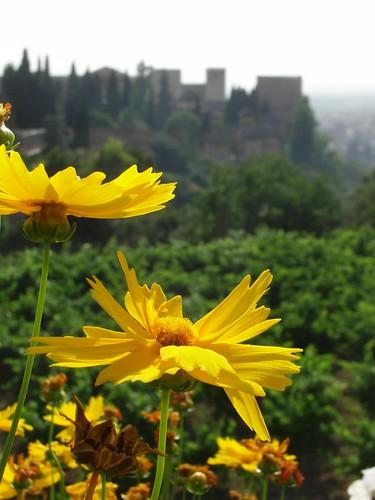 alhambra desde el generalife