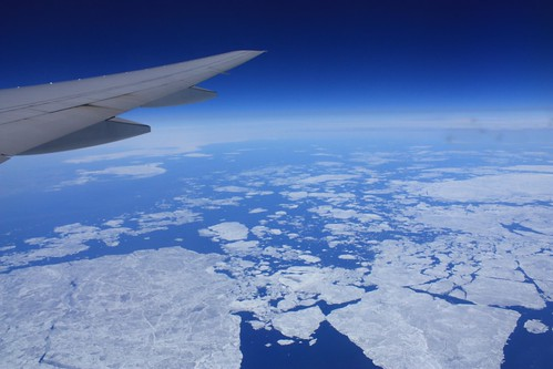 Flying North, On Ice