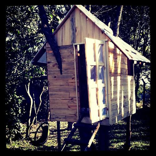 Para quem estava curioso com a casa na árvore da casa do vô ;-) #curitiba