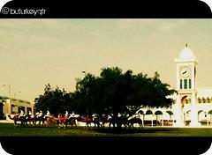 The Clock Tower - Qatar (@ buturkeyqtr) Tags: qatar  qtr