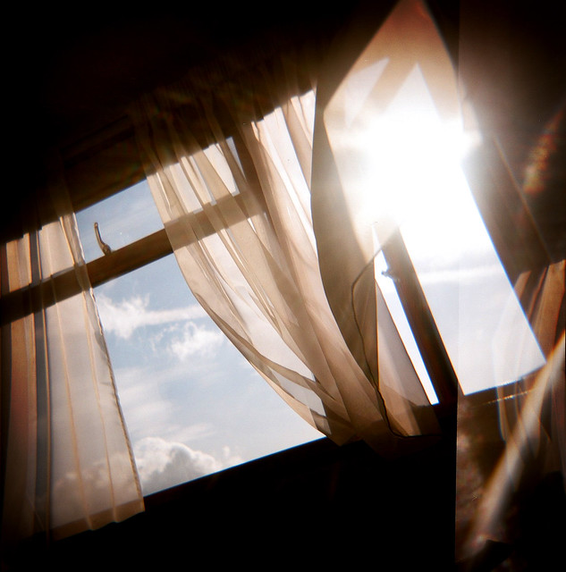 . Sunshine through my window