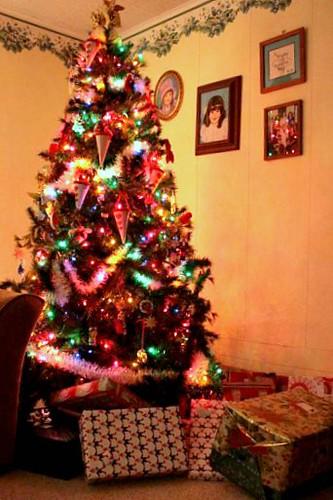 IMG_4417christmastreetb
