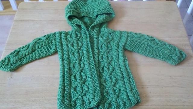 Robin Hood Jacket Front