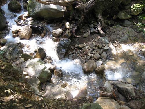 Swanson Creek