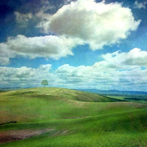フリー写真素材, 自然・風景, 丘, 雲, フランス,
