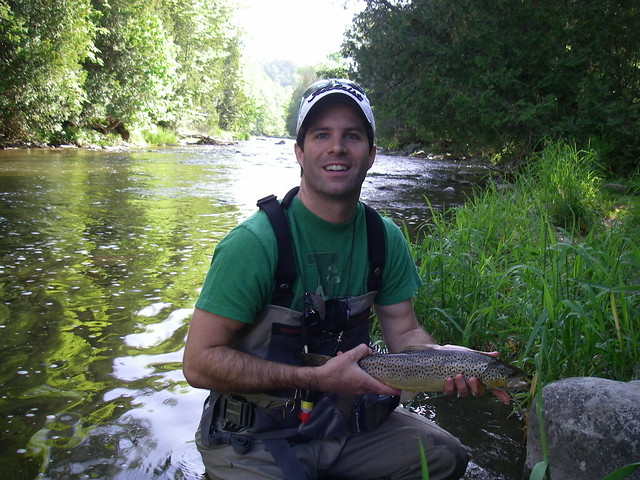 Credit brown trout