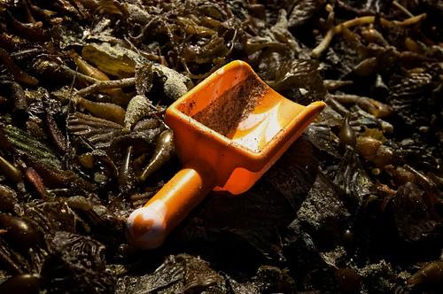 spade by JulieFaith