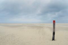A lone pole (RodaLarga) Tags: netherlands texel d7000