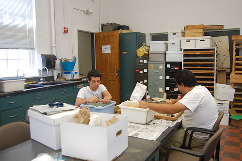 Student volunteers Ryan and Bill wash artifacts collected from Annapolis, Maryland. Source: Kate Deeley