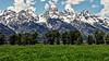 Green Field in the Tetons (Jeff Clow) Tags: specnature