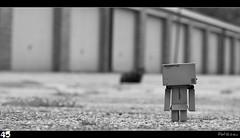 45 (RBfoto.eu) Tags: toy danbo danboard