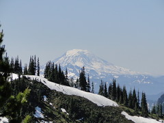 Mt. Adams from near Crystal Peak lookout site.