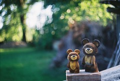 misha and misha (Liis Klammer) Tags: bear film analog 35mm estonia bokeh mascot misha zenit olympics eesti zenitet
