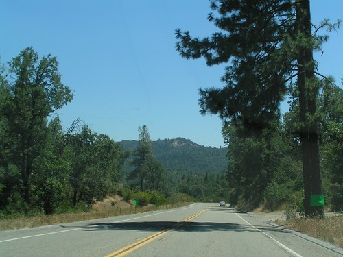 Driving to Sequoia/Kings Canyon