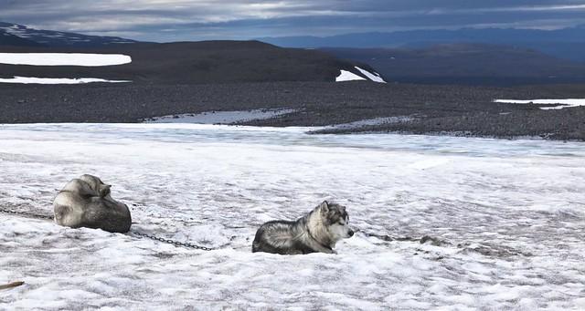 Langjökull - Iceland