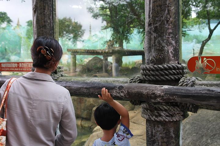 六福村動物園013