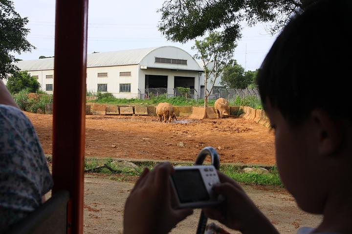 六福村動物園048