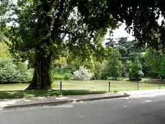 Parijs: Parc des Buttes-Chaumont (Astrid Sibbes) Tags: paris france europa europe capital frankrijk butteschaumont parijs hoofdstad capitalofeurope capitaloftheworld europesehoofdstad
