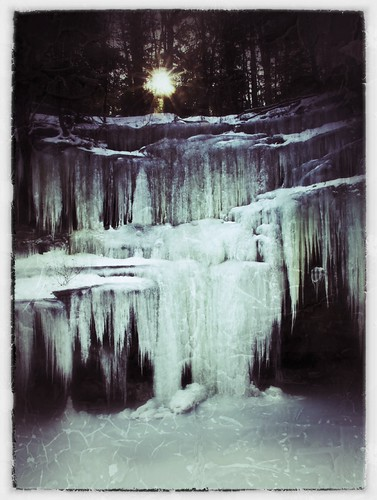 Frozen Sunrise in the Woods
