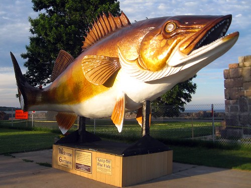 garrison's giant fish