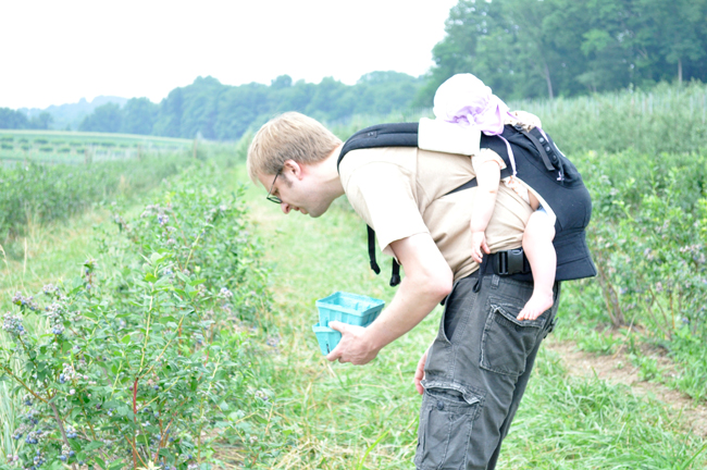 berrypicking_withdaddy