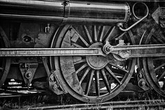 Steam locomotive (detail) (dicktay2000) Tags: bw machine australia nik maitland steamfest canonef24105mmf4isusm thechallengefactory richardtaylor 20110409img4873