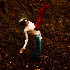 Flesh Wounds (Helen Warner (airgarten)) Tags: flesh forest photography death blood helen warner wounds glenariff airgarten