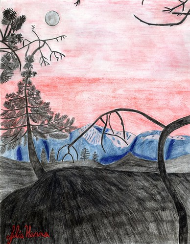 Completed Forest Sunset Sketch