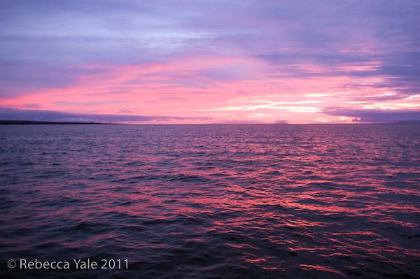 RYALE_Galapagos-291