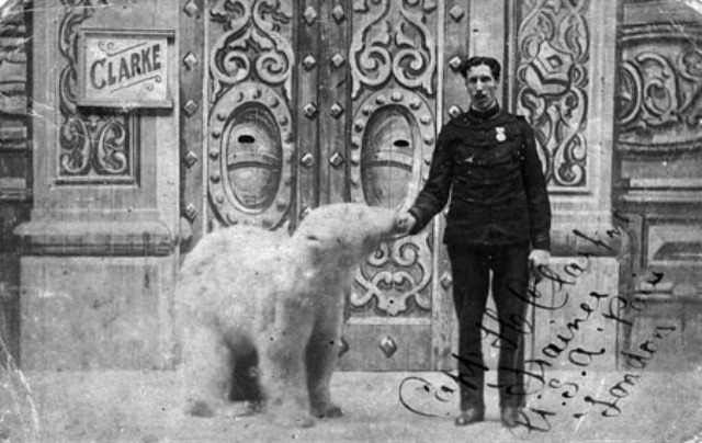 CaptainClarkeBostockPolarBear1912plus1_450