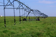 Texas Tech researchers provide free online drought tools