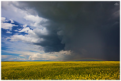 Weather Change (Artvet) Tags: